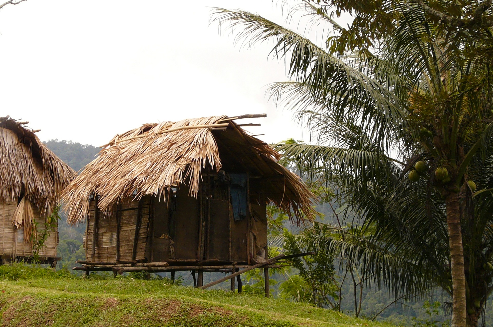 rustic house on stilts