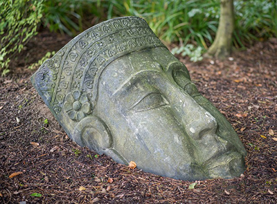 Buddha statue head on the ground