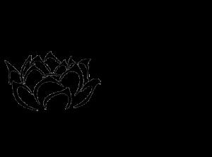 lotus vs cross