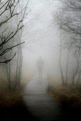 man walking in fog