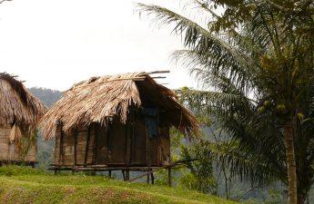 rustic house on stilts